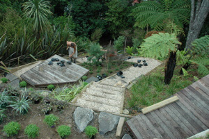Garden design auckland by accredited member landscaping for Native garden designs nz