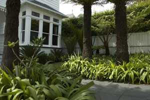 Garden Design Auckland By Accredited Member Landscaping New Zealand